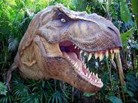 T-rex200